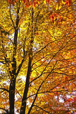 Digital Art - Tree Brightness by Nur Roy
