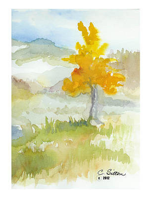 Painting - Tree by C Sitton