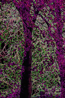 Tree Art Print by Carol Lynch
