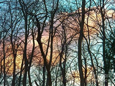 Photograph - Tree Cloud Bouquets by Judy Via-Wolff