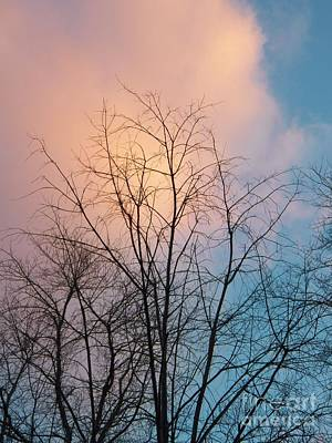 Photograph - Tree Cloud by Judy Via-Wolff