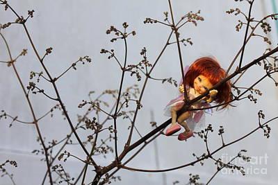 Wall Art - Photograph - Tree Fairy by Sara Ricer