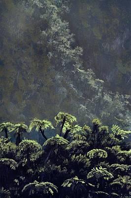 Tree Fern Photograph - Tree Ferns by Richard Bizley