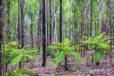 Bushfire Photograph - Tree Ferns by Avalon Fine Art Photography