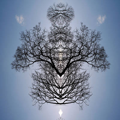 Digital Art - Tree Flip 2 by Steve Ball