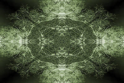 Digital Art - Tree Flip Green by Steve Ball