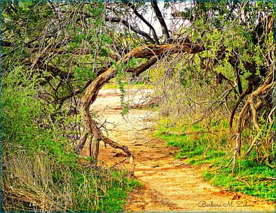 Tree Gate Original