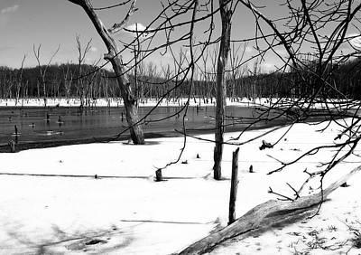 Tree Graveyard In Winter Art Print