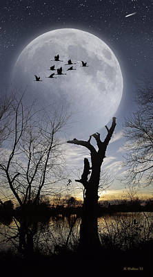 Hearns Pond Photograph - Tree Holding Up The Moon by Brian Wallace