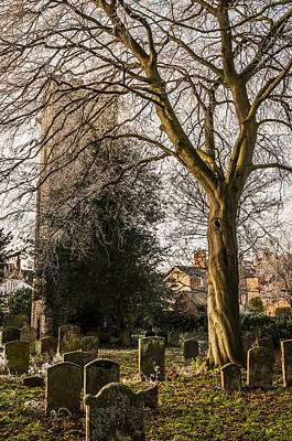 Art Print featuring the photograph Tree In St Mary Magdalene's Church Yard by David Isaacson