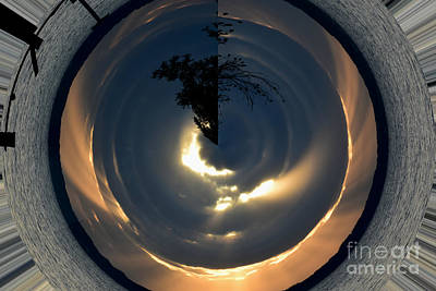 Photograph - Tree In The Copper Bowl by Gary Smith