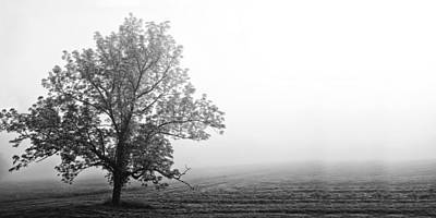 Tree In The Fog Art Print by Andrew Soundarajan