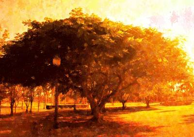 Tree In The Park Art Print by Florene Welebny