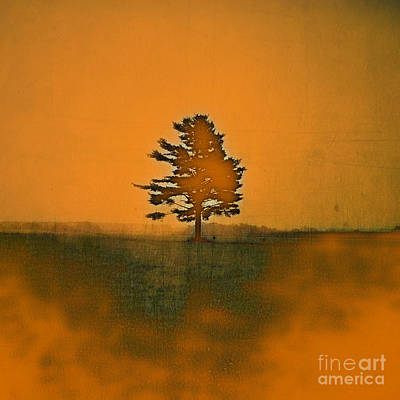 Photograph - Tree Journey - Sp11b by Variance Collections