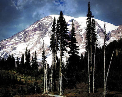 Photograph - Tree Line by Timothy Bulone
