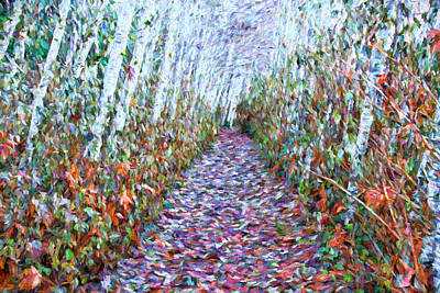 Photograph - Tree Lined Path In Autumn by Peggy Collins