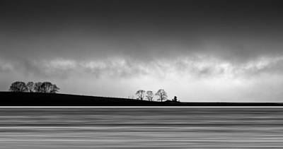 Photograph - Tree Lines by Gary Eason
