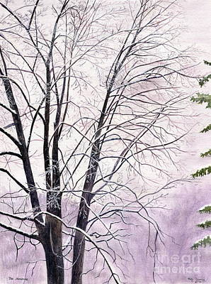 Ithaca Painting - Tree Memories by Melly Terpening