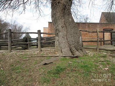 Tree Near The Gaol Art Print