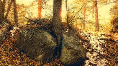 Tree Of Inspiration Art Print by Douglas MooreZart