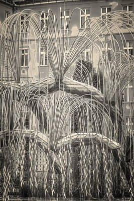 Tree Of Life Dohany Street Synagogue Art Print