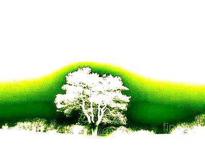 Photograph - Tree Of Life by Vicki Lynn Sodora