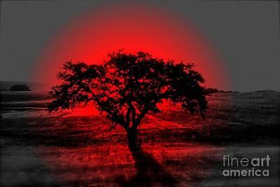 Frenzy Photograph - Tree Of Rai - No.1993 by Joe Finney