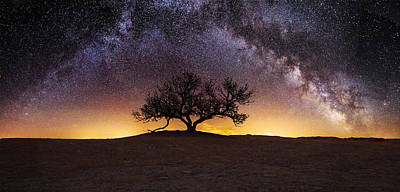 Tree Of Wisdom Print by Aaron J Groen