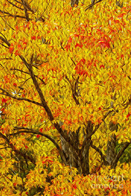 Photograph - Tree On Fire by Paul W Faust -  Impressions of Light