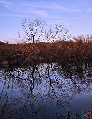 Digital Art - tree reflection on Wv pond by Chris Flees