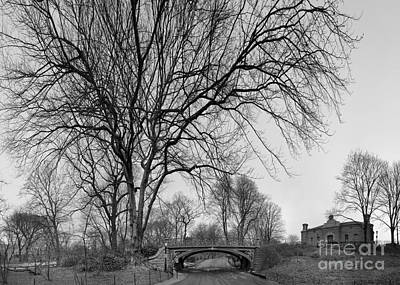 Photograph - Central Park Photos - Tree Reservoir Bridge by Dave Beckerman