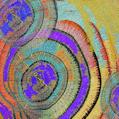 Tree Ring Abstract 3 Art Print by Tony Rubino