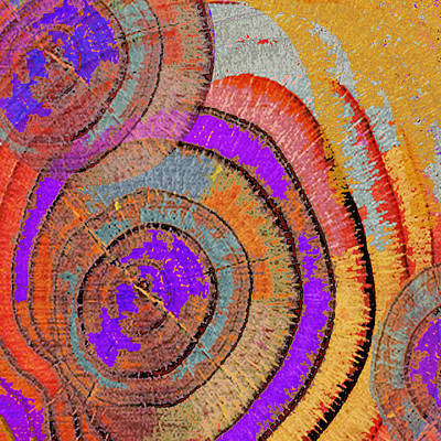 Tree Ring Abstract Original by Tony Rubino