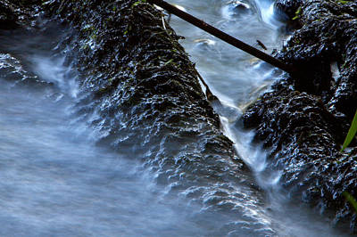 Photograph - Tree Roots In Moving Water by Jay Evers