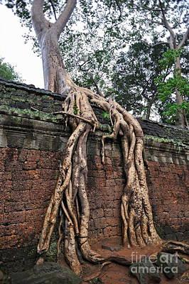 Tree Roots On Ruins At Angkor Wat Art Print