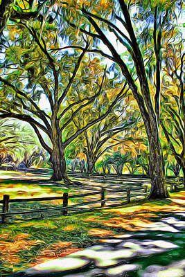 Photograph - Tree Series 12 by Carlos Diaz
