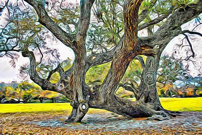 Photograph - Tree Series 15 by Carlos Diaz