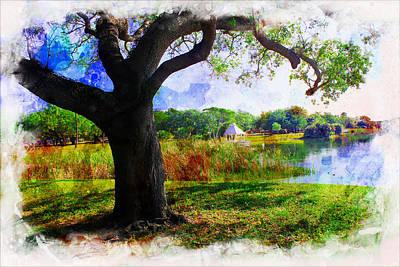 Photograph - Tree Series 29 by Carlos Diaz