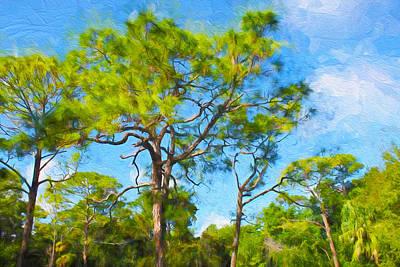 Photograph - Tree Series 61 by Carlos Diaz