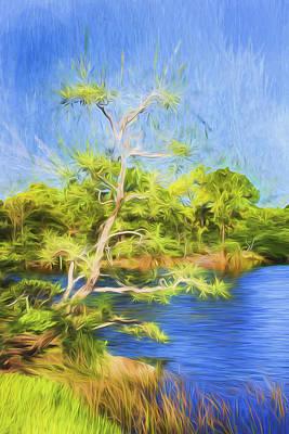 Photograph - Tree Series 62 by Carlos Diaz