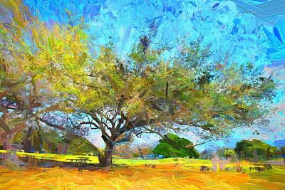 Photograph - Tree Series 64 by Carlos Diaz
