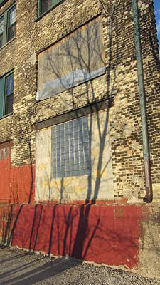 Photograph - Tree Shadow On Brick 1 by Anita Burgermeister