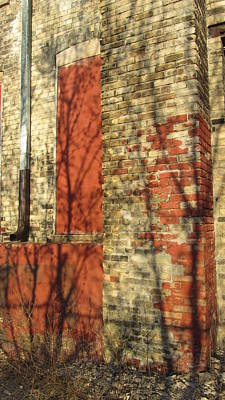Photograph - Tree Shadow On Brick 6 by Anita Burgermeister
