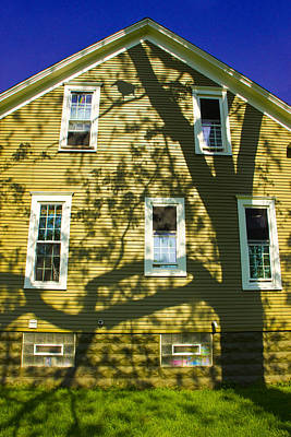 Photograph - Tree Shadow On The Side Of A Yellow House by Randall Nyhof