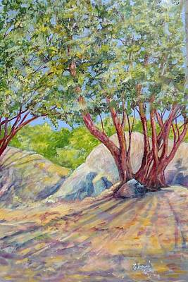 Painting - Tree Shadows by Charme Curtin