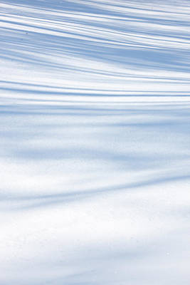 Photograph - Tree Shadows In The Snow by Bernard Lynch