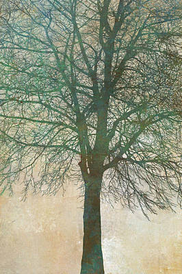 Fall Trees Painting - Tree Silhouette II by Cora Niele