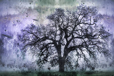 Dramatic Digital Art - Tree Silhouette In Purple by Carol Leigh