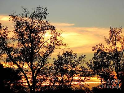 Tree Silhouette With Sunset Print by Renee Trenholm