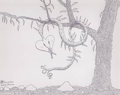 Drawing - Tree Snake Hiding by Daniel Noe